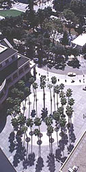 Downtown_Square_San_Jose_CA