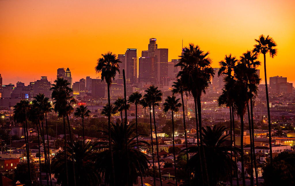 LA skyline palm trees sunset 2019 Anthony Quintano